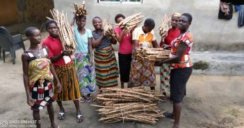 Delta Farmers Applaud Agric Ministry for Distribution of Hybrid Cassava Cuttings, As ENVIRUMEDIC Charges Delta Govt To Do More